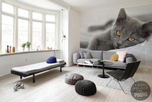 Fotomural con gatito